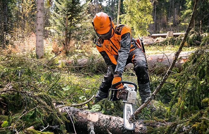 STIHL Motorsägen für die Waldarbeit