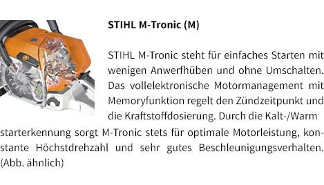 Lieblings Rettungssäge STIHL MS 462 C-M R bestellen | herrenseite.de &BF_16
